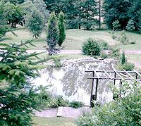 bassin entretien